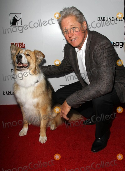 Bruce Boxleitner Photo - 17 April 2012 - Hollywood California - Kasey Bruce BoxleitnerDarling Companion - Los Angeles Premiere Held at the American Cinematheques Egyptian Theatre Photo Credit Kevan BrooksAdMedia