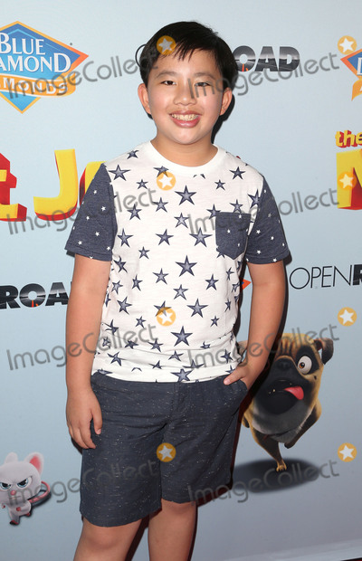 Albert Tsai Photo - 05 August 2017 - Los Angeles California - Albert Tsai Nut Job 2 Nutty by Nature World Premiere held at Regal Cinema at LA Live Photo Credit F SadouAdMedia