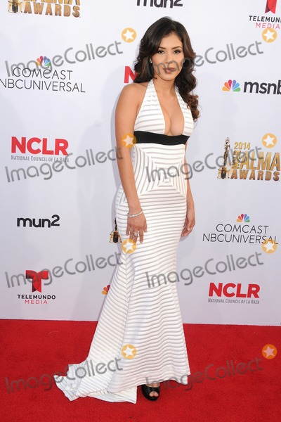 Ashley Campuzano Photo - 10 October 2014 - Pasadena California - Ashley Campuzano NCLR ALMA Awards 2014 - Arrivals held at the Pasadena Civic Auditorium Photo Credit Byron PurvisAdMedia