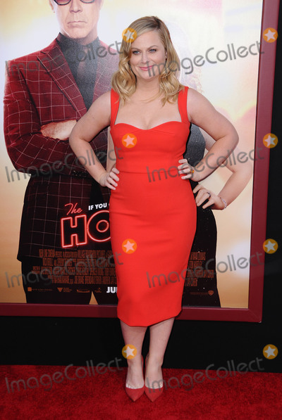 Amy Poehler Photo - 26 June 2017 - Hollywood California - Amy Poehler The House Los Angeles Premiere held at the TCL Chinese Theatre in Hollywood Photo Credit Birdie ThompsonAdMedia