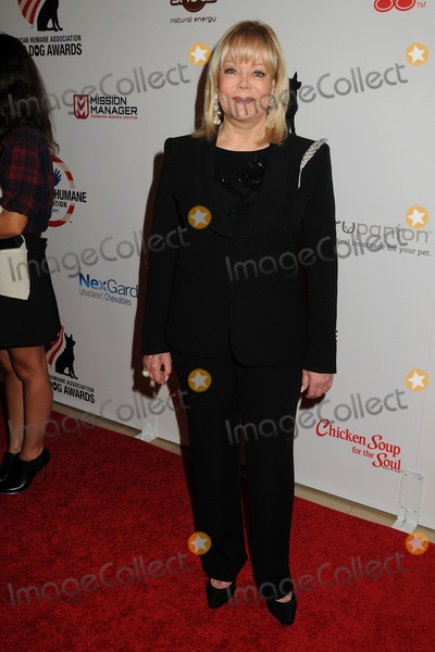 Candy Spelling Photo - 27 September 2014 - Beverly Hills California - Candy Spelling 4th Annual American Humane Association Hero Dog Awards held at The Beverly Hilton Hotel Photo Credit Byron PurvisAdMedia