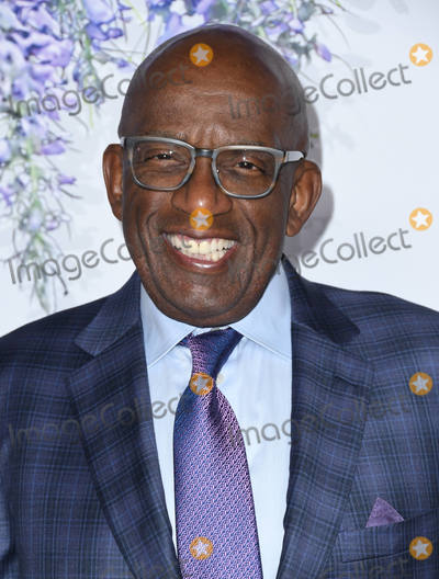 Al Roker Photo - 26 July 2018 - Beverly Hills California - Al Roker 2018 Hallmark Channel Summer TCA held at Private Residence Photo Credit Birdie ThompsonAdMedia