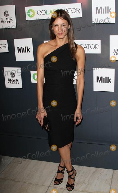 Angela Gots Photo - 6 November 2014 - Los Angeles California - Angela Gots Colaboratorcom Launch Party held at Milk Studios Los Angeles Photo Credit AdMedia