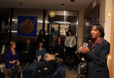 Nancy Krasne Photo - 18 December 2012 - Beverly Hills California - Los Angeles County District Attorney Jackie Lacey NWPC LA Westside Holiday Party and Elections Celebration Held at the home of Nancy Krasne Photo Credit Faye SadouAdMedia