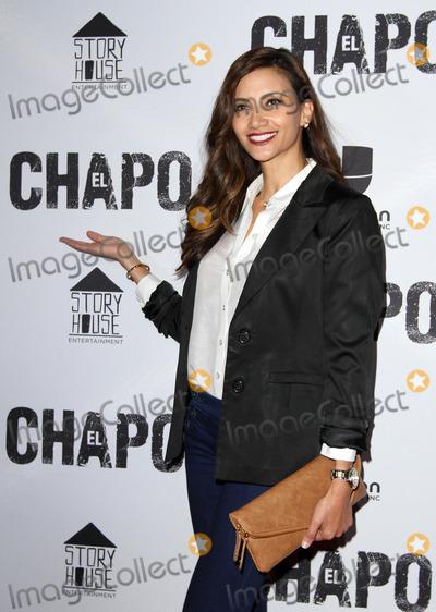 El Chapo Photo - 19 April 2017 - Los Angeles California - Guest Univisions El Chapo Original Series Premiere Event held at The Landmark Theatre Photo Credit AdMedia