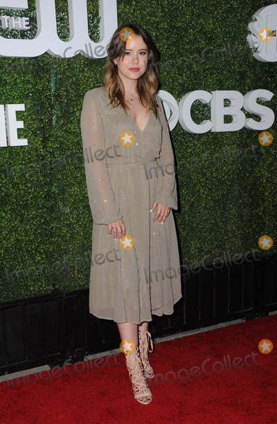 Taylor Spreitler Photo - 10 August 2016 - West Hollywood California Taylor Spreitler 2016 CBS CW Showtime Summer TCA Party held at Pacific Design Center Photo Credit Birdie ThompsonAdMedia