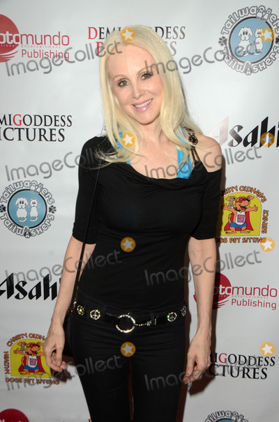 Donna Spangler Photo - Donna Spanglerat the Finley and the Emerald Volcano Book Launch Party presented by PhotoMundo Publishing and DemiGoddess Chronicle OrangeBone Los Angeles CA 03-29-16