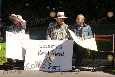Casey Kasem Photo - Charles Olsen Mouner Kasemat a protest involving Casey Kasems children brother and friends who want to see him but have been denied any contact  Private Location Holmby Hills CA 10-01-13