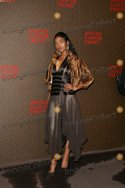 Ananda Lewis Photo - Ananda Lewis at the 2004 Louis Vuitton United Cancer Front Gala Universal Studios Universal City CA 11-08-04