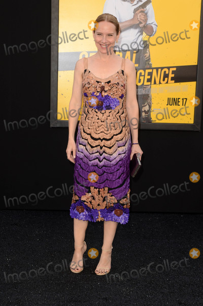 Amy Ryan Photo - Amy Ryanat the Central Intelligence Los Angeles Premiere Village Theater Westwood CA 06-10-16