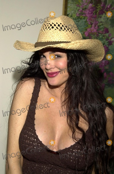 Julie Strain Photo - Julie Strain at the 12 Girls of Christmas Model Search Party Le Meridien Hotel Los Angeles CA 08--09-02