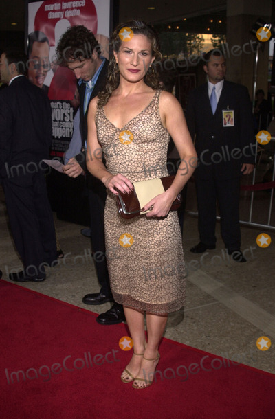 Ana Gasteyer Photo -  Ana Gasteyer at the premiere of the MGM Feature Wahts The Worst That Could Happen at Loews Cineplex Century City Cinemas 05-22-01
