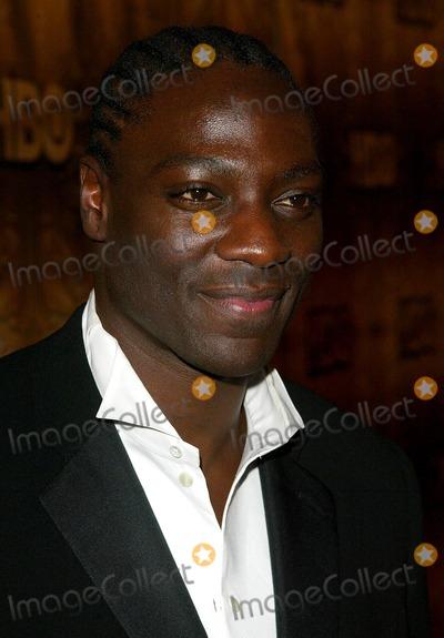 Adewale Akinnuoye-Agbaje Photo - Adewale Akinnuoye-Agbajeat the HBO Golden Globe Awards Party Beverly Hilton Hotel Beverly Hills CA 01-16-06