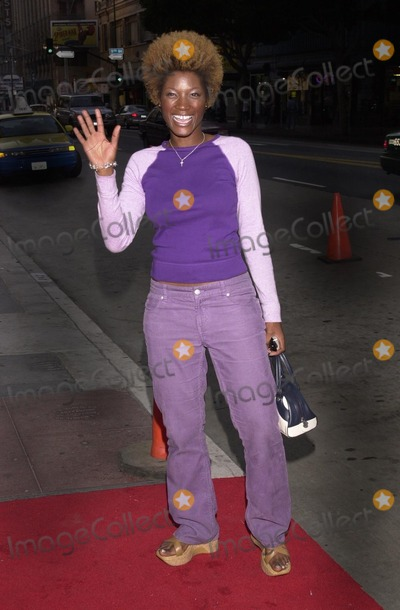 Yolanda Ross Photo - Yolanda Ross at  the opening night gala for Outfest 2002 at the Orpheum Theatre in Los Angeles CA 07-11-02
