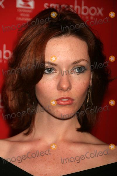 Amanda Fields Photo - Amanda Fieldsat the Smashbox Cosmetics Holiday 2006 Brent Bolthouse Birthday Party Area Los Angeles CA 12-14-06
