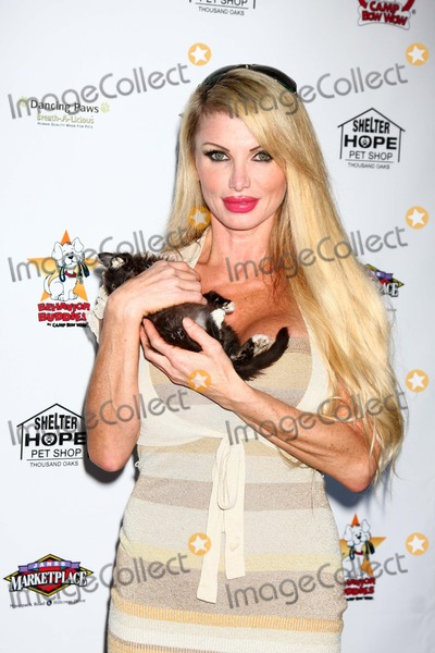 Taylor Wane Photo - Taylor Waneat the Player Concert celebrating Devin DeVasquez 50th Birthday to benefit Shelter Hope Pet Shop Canyon Club Agoura CA 06-03-13