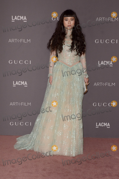 Asia Chow Photo - LOS ANGELES - NOV 4  Asia Chow at the LACMA Art and Film Gala at the Los Angeles County Musem of Art on November 4 2017 in Los Angeles CA