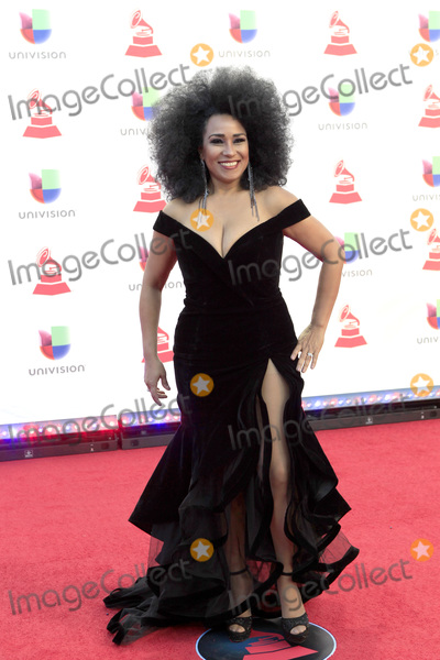 Aymee Nuviola Photo - LAS VEGAS - NOV 15  Aymee Nuviola at the 19th Annual Latin GRAMMY Awards - Arrivals at the MGM Garden Arena on November 15 2018 in Las Vegas NV
