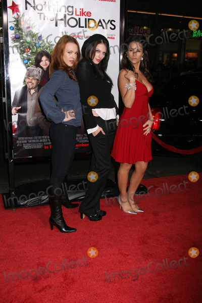 America Olivo Photo - Erin Cummings Julia Voth and America Olivo arriving at the Premiere of Nothing Like the Holidays at the Graumans Chinese Theater in Hollywood CADecember 3 2008