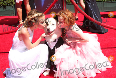 Francesca Capaldi Photo - LOS ANGELES - AUG 16  G Hannelius Kuma Francesca Capaldi at the 2014 Creative Emmy Awards - Arrivals at Nokia Theater on August 16 2014 in Los Angeles CA