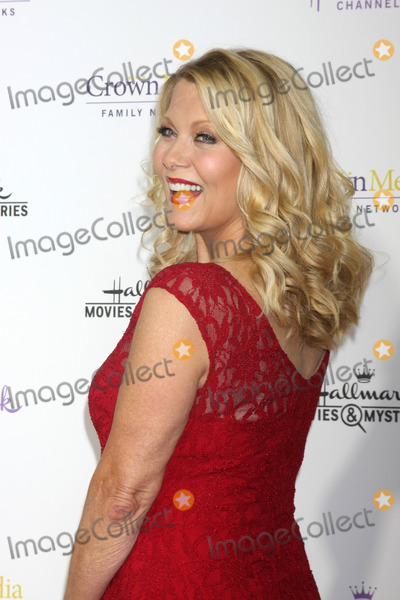 Barbara Niven Photo - LOS ANGELES - JAN 8  Barbara Niven at the Hallmark TCA Party at a Tournament House on January 8 2014 in Pasadena CA