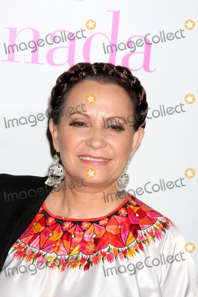 Adriana Barraza Photo - LOS ANGELES - JAN 18  Adriana Barraza arrives at From Prada to Nada at Regal Cinemas at LA Live on January 18 2011 in Los Angeles CA