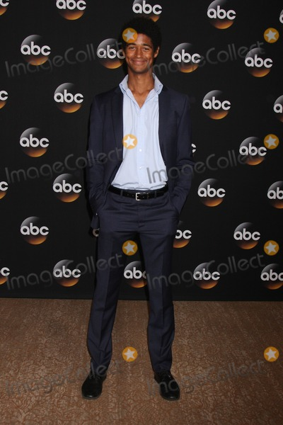 Alfred Enoch Photo - LOS ANGELES - JUL 15  Alfred Enoch at the ABC July 2014 TCA at Beverly Hilton on July 15 2014 in Beverly Hills CA