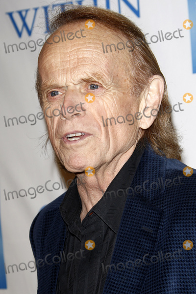 Al Jardine Photo - LOS ANGELES - DEC 3  Al Jardine at the 3rd Annual Change Begins Within Benefit at the LACMA on December 3 2011 in Los Angeles CA
