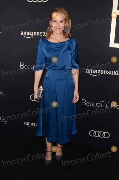 Amy Ryan Photo - LOS ANGELES - OCT 8  Amy Ryan at the Beautiful Boy Premiere at the Samuel Goldwyn Theater on October 8 2018 in Beverly Hills CA