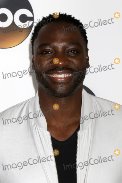 Adewale Akinnuoye-Agbaje Photo - LOS ANGELES - AUG 6  Adewale Akinnuoye-Agbaje at the ABC TCA Summer 2017 Party at the Beverly Hilton Hotel on August 6 2017 in Beverly Hills CA