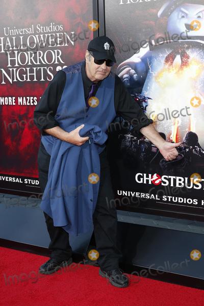 Dan Aykroyd Photo - LOS ANGELES - SEP 12  Dan Aykroyd at the Halloween Horror Nights at the Universal Studios Hollywood on September 12 2019 in Universal City CA