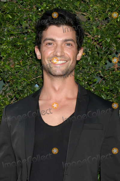 David Alpay Photo - Gavin OConnorLOS ANGELES - JUL 29  David Alpay at the Hallmark 2015 TCA Summer Press Tour Party at the Private Residence on July 29 2015 in Beverly Hills CA