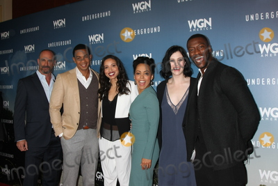 Aldis Hodge Photo - LOS ANGELES - JAN 8  Christopher Meloni Alano Miller Jurnee Smollett-Bell Amirah Vann Jessica de Gouw Aldis Hodge at the Underground WGN Winter 2016 TCA Photo Call at the The Langham Huntington Hotel on January 8 2016 in Pasadena CA