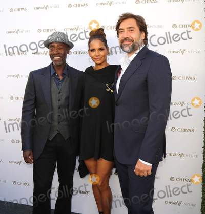 Javier Bardem Photo - Photo by gotpapstarmaxinccomSTAR MAX2017ALL RIGHTS RESERVEDTelephoneFax (212) 995-119671317Don Cheadle Halle Berry and Javier Bardem at The Final Pitch in Los Angeles CA