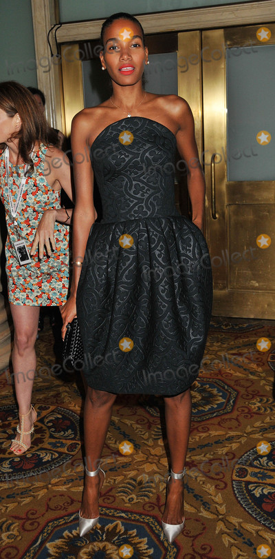 Arlenis Sosa Photo - Photo by Demis MaryannakisstarmaxinccomSTAR MAX2015ALL RIGHTS RESERVEDTelephoneFax (212) 995-11966215Arlenis Sosa at The Gordon Parks Foundation Awards Dinner And Auction at Cipriani Wall Street(NYC)