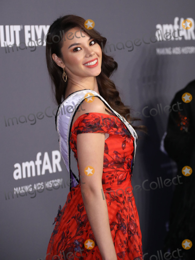 MISS UNIVERSE Photo - Photo by zzJohn NacionstarmaxinccomSTAR MAXCopyright 2019ALL RIGHTS RESERVEDTelephoneFax (212) 995-11962619Catriona Gray (Miss Universe 2018) at the amfAR Gala New York AIDS Research Benefit held at Cipriani Wall Street in New York City(NYC)