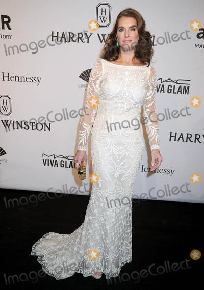 Brooke Shields Photo - Photo by Dennis Van TinestarmaxinccomSTAR MAX2015ALL RIGHTS RESERVEDTelephoneFax (212) 995-119621115Brooke Shields at 2015 amfAR New York Gala(NYC)