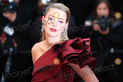 Amber Heard Photo - CANNES FRANCE - MAY 17 Amber Heard attends the screening of Pain And Glory (Dolor Y Gloria Douleur Et Gloire) during the 72nd annual Cannes Film Festival on May 17 2019 in Cannes France  (Photo by Laurent KoffelImageCollectcom)