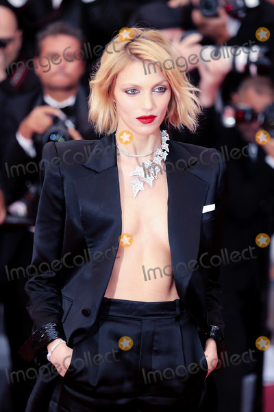 Anja Rubik Photo - CANNES FRANCE - MAY 17 Anja Rubik attends the screening of Pain And Glory (Dolor Y Gloria Douleur Et Gloire) during the 72nd annual Cannes Film Festival on May 17 2019 in Cannes France (Photo by Laurent KoffelImageCollectcom)
