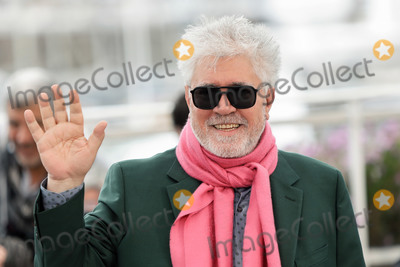 Pedro Almodovar Photo - CANNES FRANCE - MAY 18 Pedro Almodovar attends the photocall for Pain And Glory (Dolor Y Gloria Douleur Et Gloire) during the 72nd annual Cannes Film Festival on May 18 2019 in Cannes France (Photo by Laurent KoffelImageCollectcom)