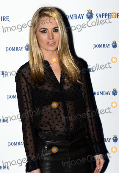 Amanda Hearst Photo - Amanda Hearst at the art collection for Bombay Sapphire photocall at Madrid City hall on November 22 2011 in Madrid Spain