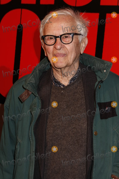 Albert Maysles Photo - Director Albert Maysles attends the Shine a Light premiere at the Ziegfeld Theater