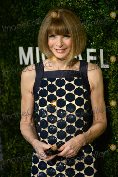 Anna Wintour Photo - October 17 2016  New York CityAnna Wintour attending the Gods Love We Deliver Golden Heart Awards on October 17 2016 in New York CityCredit Kristin CallahanACE PicturesTel 646 769 0430