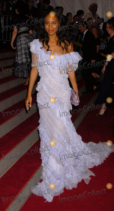 Joy Bryant Photo - Joy Bryant at the AngloMania Costume Institute Gala at The Metropolitan Museum of Art