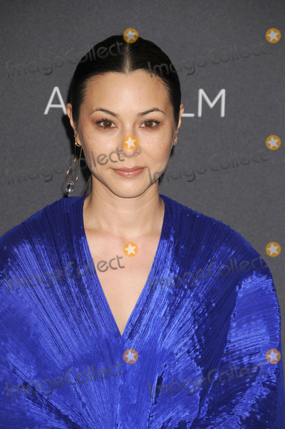 China Chow Photo - October 29 2016 LAChina Chow arriving at the 6th Annual LACMA Art  Film Gala held at the The Los Angeles County Museum of Art on october 29 2016 in LABy Line FamousACE PicturesACE Pictures IncTel 6467670430