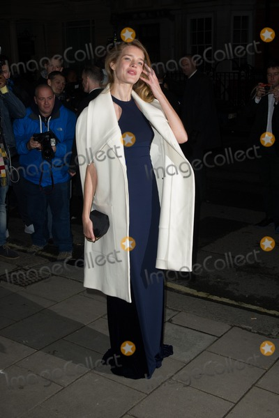 Natalie Vodianova Photo - Natalie Vodianova for the Harpers Bazaar Women of the Year Awards 2013Claridges Hotel London 05112013 Picture by Dave Norton  Featureflash