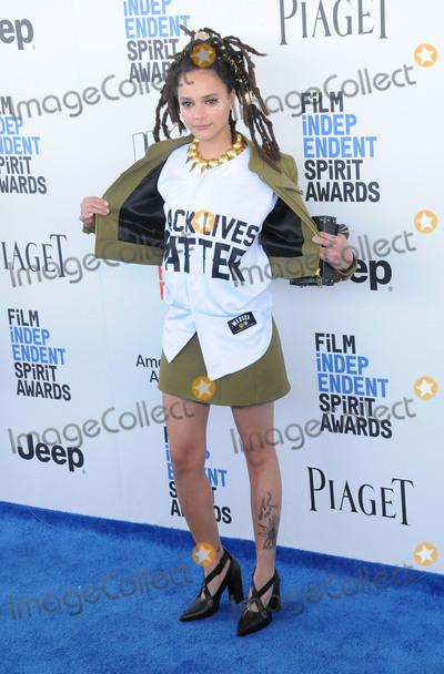Sasha Lane Photo - SANTA MONICA CA - FEBRUARY 25 Actress Sasha Lane attends 2017 Film Independent Spirit Awards on February 25 2017 in Santa Monica California  (Photo by Barry KingImageCollectcom)