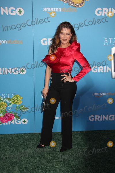 Alicia Machado Photo - Alicia Machado 03062018 The World Premiere of Gringo held at LA Live Regal Cinemas in Los Angeles CA Photo by Izumi Hasegawa  HollywoodNewsWireco