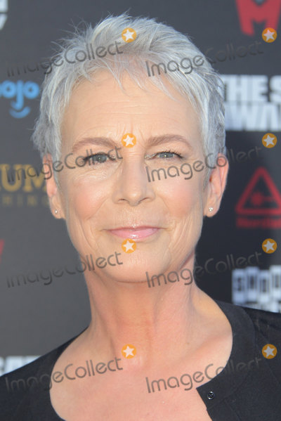 Saturn Awards Photo - Jamie Lee Curtis 09132019 The 45th Annual Saturn Awards held at the Avalon Hollywood in Los Angeles CAPhoto by Yurina Abe  HollywoodNewsWireco