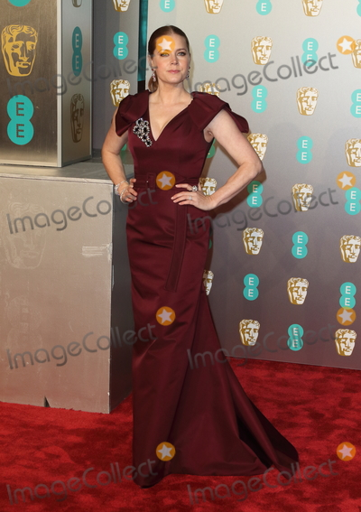 Amy Adams Photo - London UK Amy Adams at EE British Academy Film Awards 2019 at the Royal Albert Hall Kensington London on Sunday February 10th 2019Ref LMK73-J4348-110219Keith MayhewLandmark MediaWWWLMKMEDIACOM